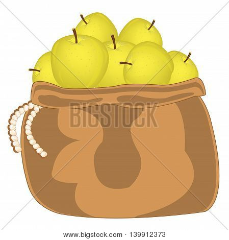 Apple of the wanted colour in bag on white background is insulated