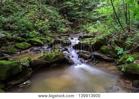 Small Native Trout Stream in Western Pennsylvania.