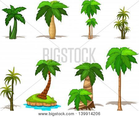 collection of palm tree for you design