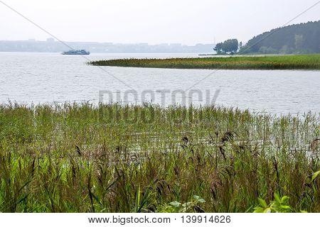 The river Berd Novosibirsk oblast Siberia Russia - July 25 2016: summer landscape on the river