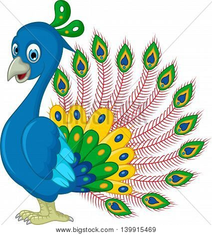 funny Peacock cartoon posing for you design