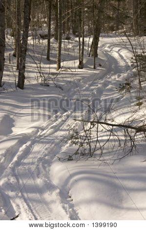 Snowmobiles Tracks