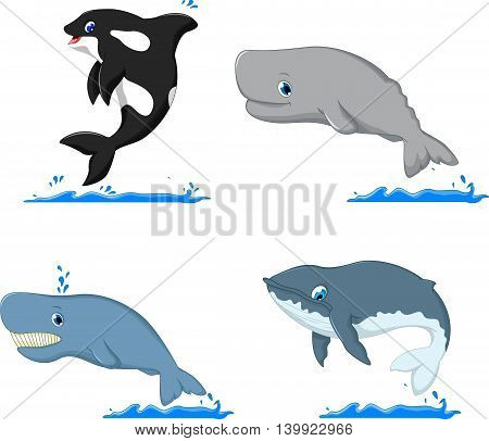 collection of whale cartoon for you design