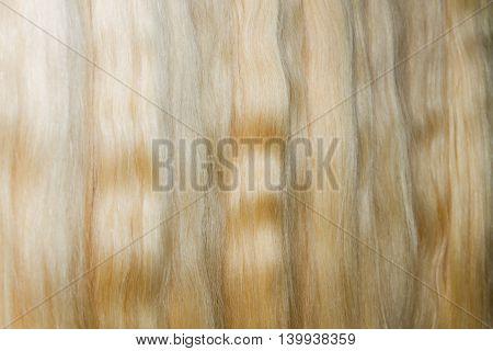 Long Woman Chignon