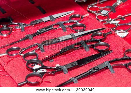 Professional Hairdresser's Scissors