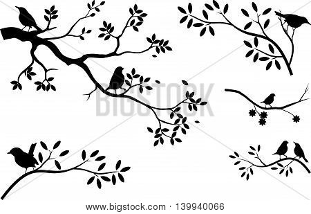 collection of branch tree silhouette with bird