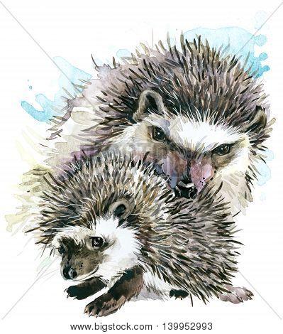 Hedgehog watercolor. Hedgehog and baby Hedgehog. Hedgehog family watercolor illustration. Motherhood watercolor background