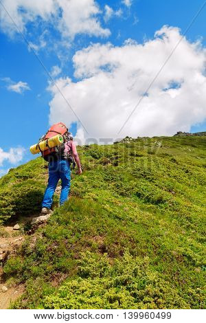 Young female hiker going uphill. Hiking. Hike in Carpathian mountains. Hiker going up to the mountain peak on a very steep trail. Lifestyle concept active leisure tourism