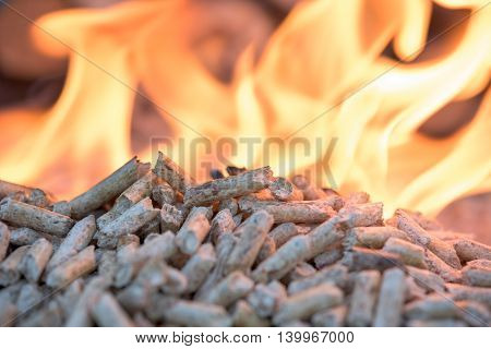 Biomass in flames- oak pellets close up