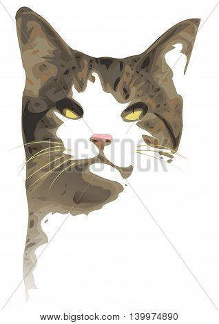 An illustration of a cat's head as a portrait on a white background. Uses negative space
