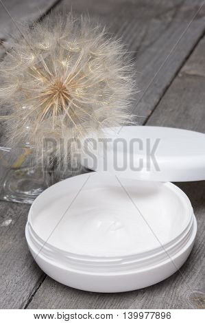 Light like a dandelion skin care cream concept: big fluffy dandelion and open jar filled with cream on old wooden planks. Fresh light texture of cosmetic product for sensitive skin