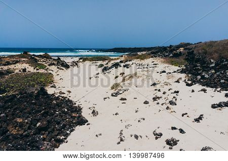 View of a beautiful white sand beach in Lanzarote