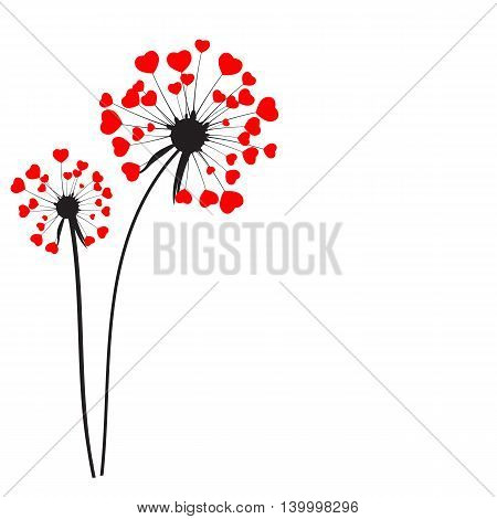 Abstract Dandelion on White Background Vector Illustration EPS10