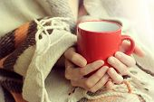 red cup warming your hands and aroma of hot drink on a background of warm plaid / attributes cozy warm holiday home poster
