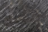 Dark gray or black rustic wood texture closeup. Wooden background. Hardwood surface circle, wooden disc cut out poster