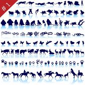 Set of  different animals, birds, insects and fishes  vector silhouettes poster