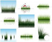 Vector grass silhouettes backgrounds set with reflection in water. All objects are separated. poster