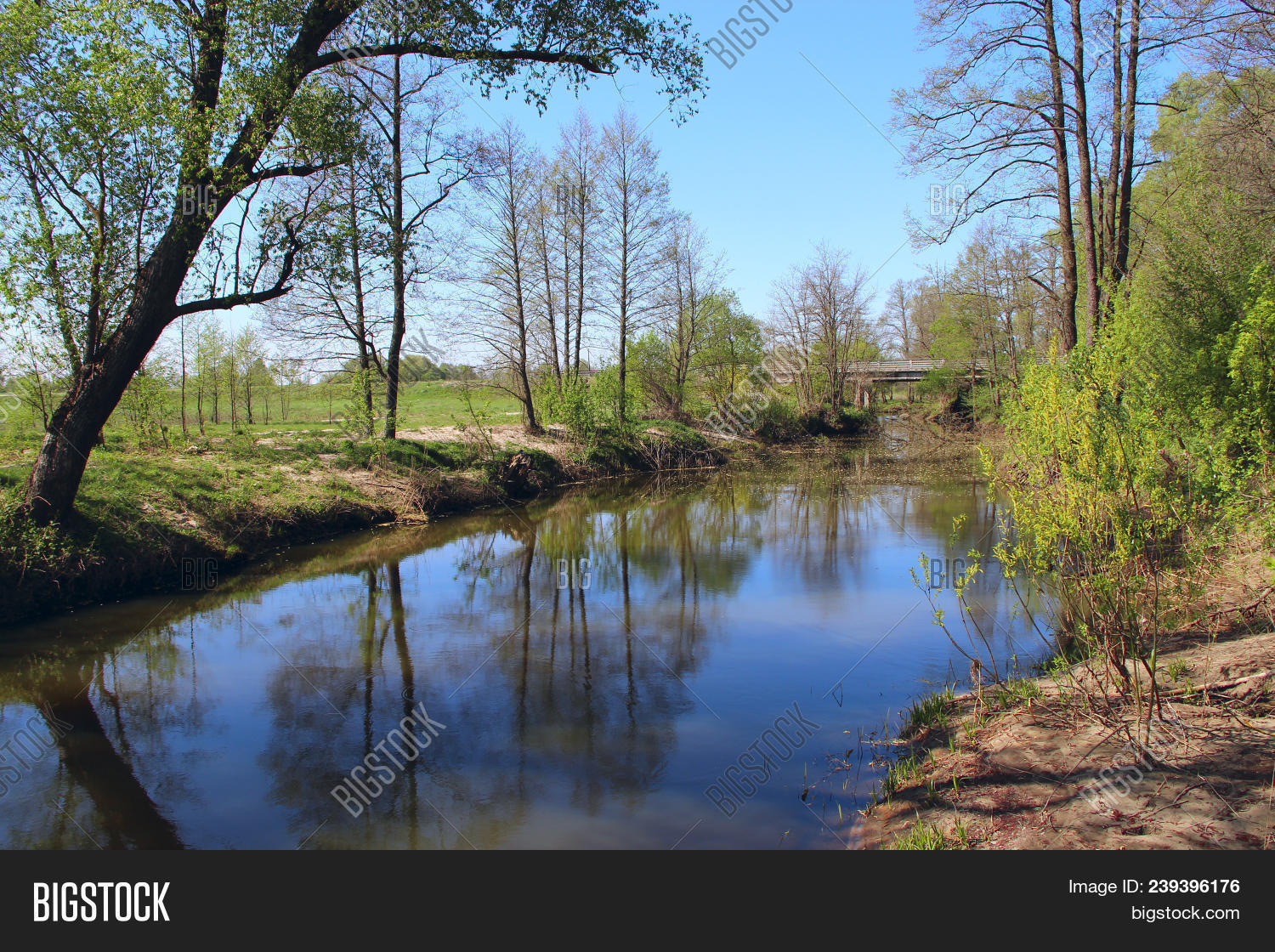 Landscape River Trees Image Photo Free Trial Bigstock