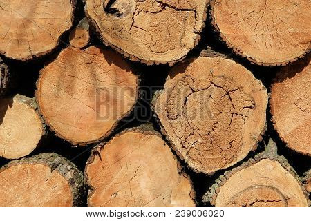 Pattern Of Wooden Beams In Heap. Thick Beams