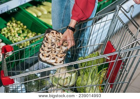 Partial View Of Shopper Putting Products Into Shopping Cart In Supermarket
