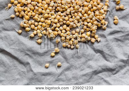 Sprouted Chickpea On Rustic Linen Textile. Bean Sprouts Raw. Source Of Protein For Vegan Healthy Die