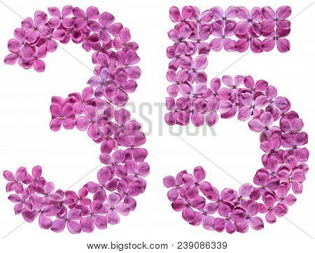 Arabic Numeral 35, Thirty Five, From Flowers Of Lilac, Isolated On White Background
