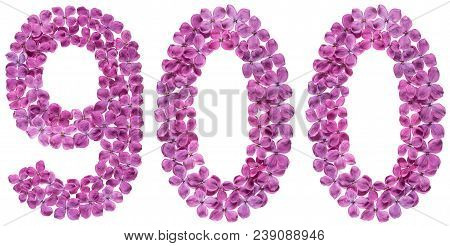 Arabic Numeral 900, Nine Hundred, From Flowers Of Lilac, Isolated On White Background