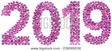Numeral 2019 From Flowers Of Lilac, Isolated On White Background
