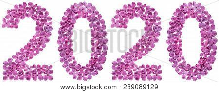 Numeral 2020 From Flowers Of Lilac, Isolated On White Background