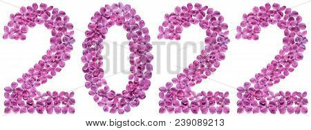 Numeral 2022 From Flowers Of Lilac, Isolated On White Background
