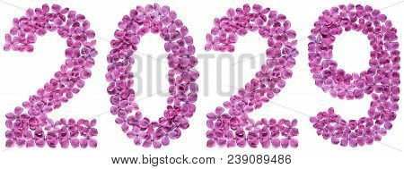 Numeral 2029 From Flowers Of Lilac, Isolated On White Background