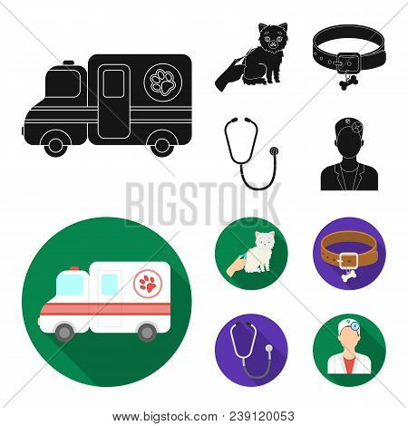 Collar, Bone, Cat, Haircut .vet Clinic Set Collection Icons In Black, Flat Style Vector Symbol Stock