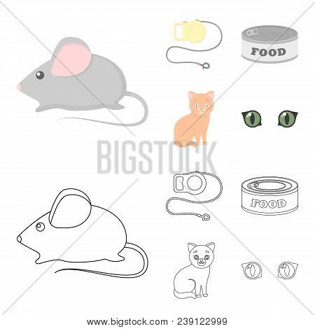 Mouse, Pet Leash, Pet Food, Kitten. Cat Set Collection Icons In Cartoon, Outline Style Vector Symbol