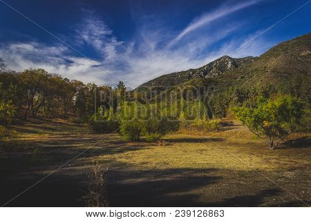 Clearing In The Forest With Tree-covered Mountains In The Background And Clouds In The Sky Along A H
