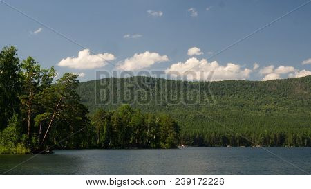 Summer Nature Mountain Forest Lake Landscape. Beautiful Green Nature, Blooming Trees Next To A Green