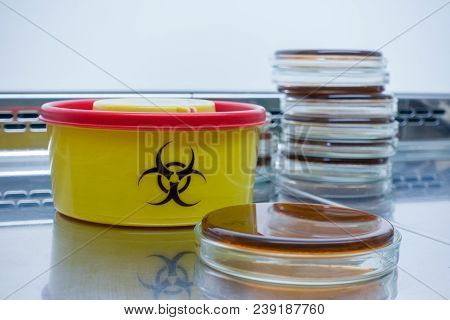 A Close-up Of A Petri Dish With Bacteria Next To A Biohazard Container. Work With Pathogenic Bacteri