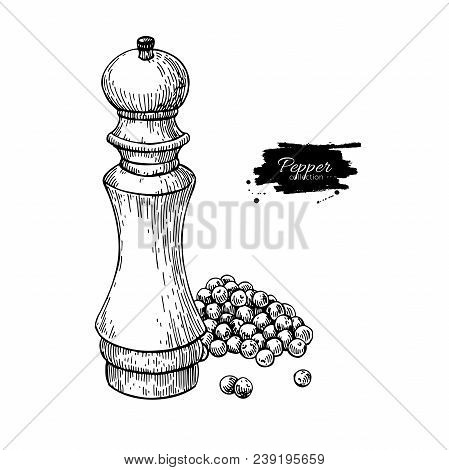 Pepper Mill With Heap Of Peppercorn Vector Drawing. Seasoning And Spice Grinder Sketch. Black Pepper
