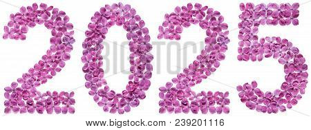 Numeral 2025 From Flowers Of Lilac, Isolated On White Background