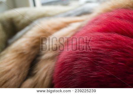 Fur, Colored Naturar Fox Fur Texture. Closeup Photo.
