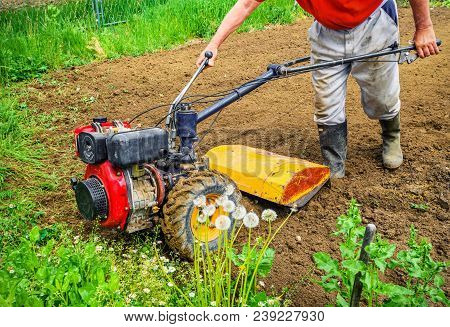 Farmer Plows The Land With A Cultivator. Agriculture
