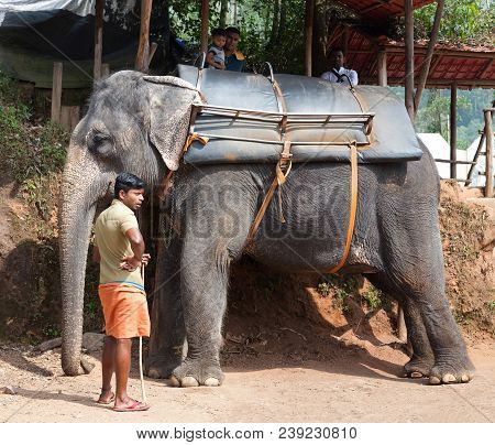 Tourists On An Elefant Riding Around The Park In Kerala State, India