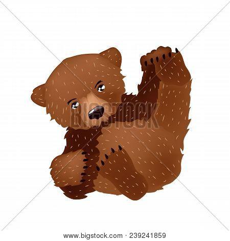 Lovely Bear. The Vector Image For Design