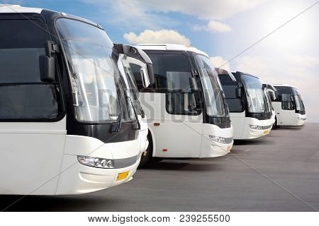 Big Tourist Buses On Parking Lot Photo
