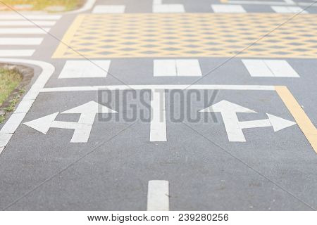 Symbols Turn Left And Turn Right With Crosswalk On Road