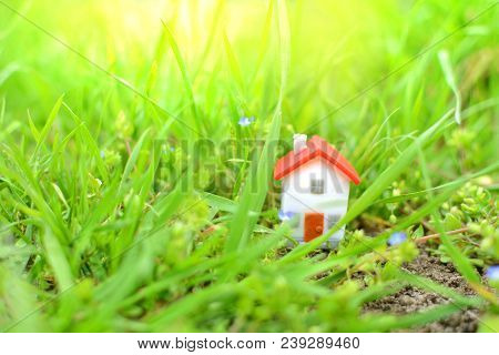 Fantasy Concept Of A Housing. Fairy Miniature House And Nature. Miniature House In A Green Grass.