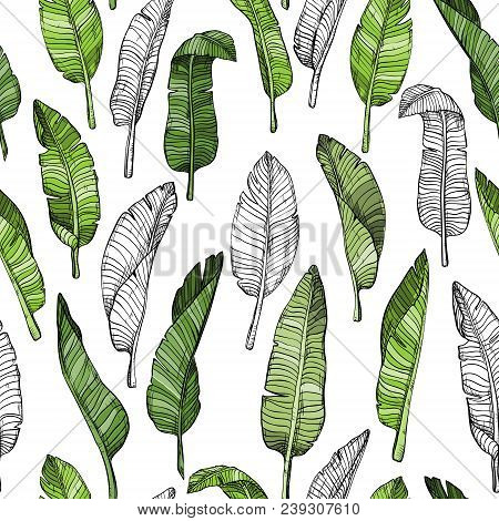 Seamless Leaves Pattern With Tropical Leaves, Vector Illustration