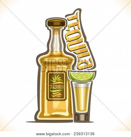 Vector Illustration Of Alcohol Drink Tequila, Yellow Bottle Of Luxury Mexican Cactus Booze, Full Sho