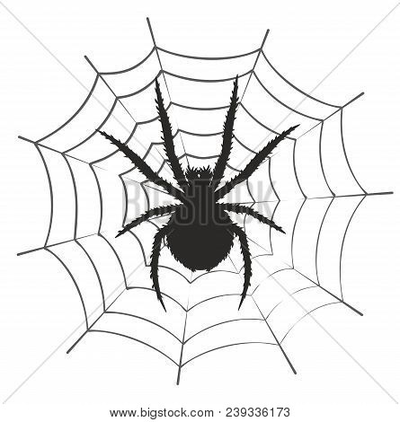A Silhouette Of Black Spider With Web.
