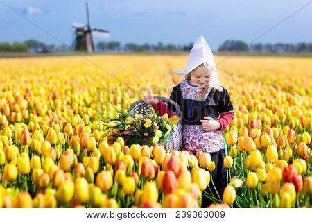 Child In Tulip Flower Field. Windmill In Holland.