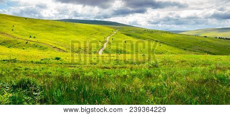 Road Through Grassy Hillside. Beautiful Panorama Of Summer Landscape In Mountain On A Cloudy Day. Tr